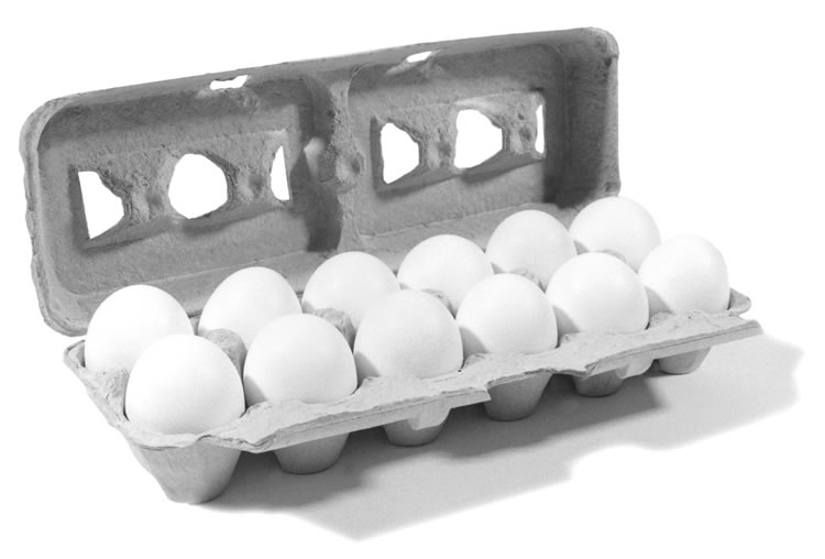 Eggs (large) 1 dozen - Cliggro